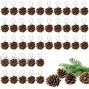 Apipi 40 Pieces Rustic Pine Cones Ornaments -Christmas Natural Pine Cones Ornament with String for Gift Tag Tree Home Party Fall Christmas Hanging Decoration ,DIY Crafts