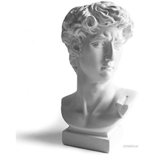"SCMAIGU 6.5"" David Bust Greek Statue Face Head Planter Succulent Planters Dried Flowers Vase Room Bookshelf Office Decor Sculptures Makeup Brush Holders 6.5 David Statue Head Hollow16.5cm"