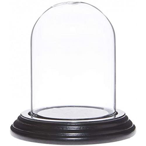 Plymor 2.5 x 3.5 Small Glass Display Dome Cloche Black Wood Veneer Base