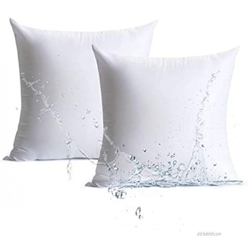 Calibrate Timing 20 x 20 Pillow Inserts Outdoor Water Resistant HypoallergenicSquare Decorative Throw Pillow Cushion Stuffer Forms Couch Sham- 20 x 20 inches Pack of 2