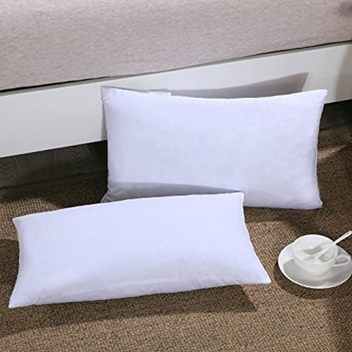 Homelike Moment Down Feather Throw Pillow Insert 12X20 Couch Pillow Inserts Set of 2 100% Cotton Fabric